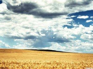 安卓风景 自然风光手机壁纸