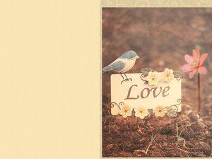 安卓爱情美图 唯美温馨手机壁纸