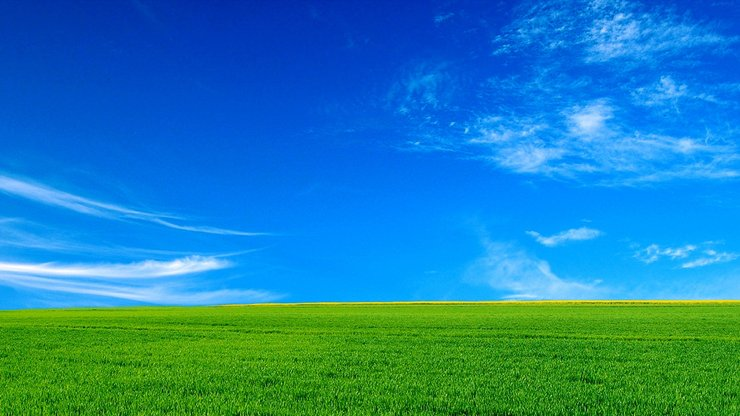 安卓风景 碧绿草原手机壁纸