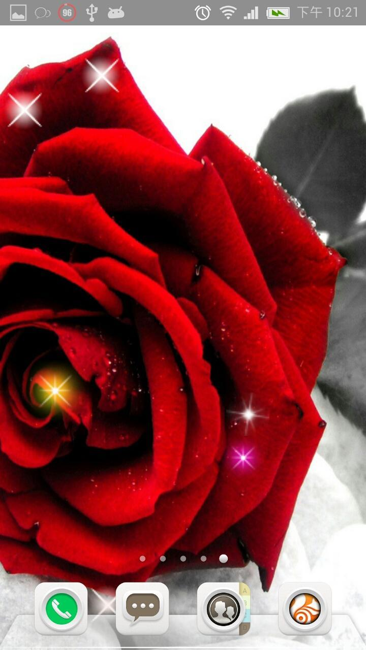 唯美玫瑰花动态锁屏壁纸