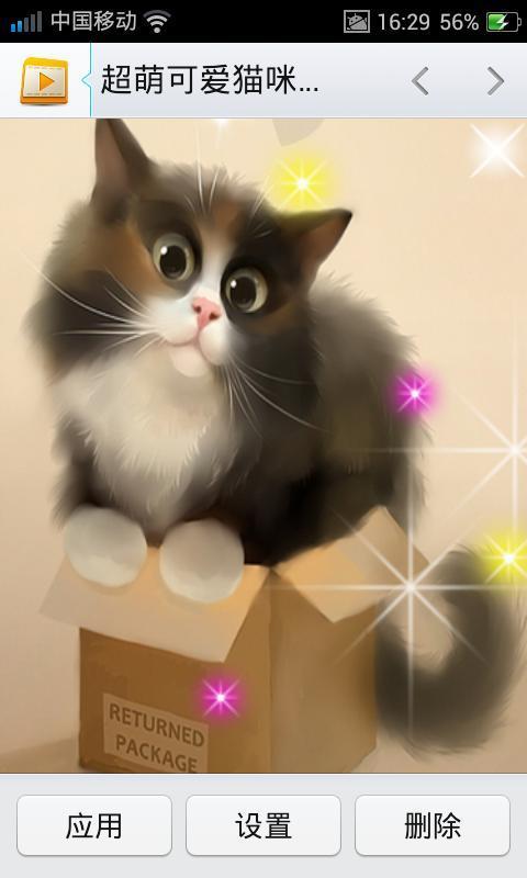 超萌可爱猫咪动态壁纸2