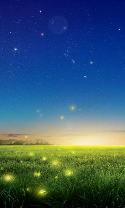 背景 壁纸 草原 风景 天空 桌面 480_800 竖版 竖屏 手机