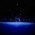 幻境-梦幻星空麋鹿梦象动态壁纸