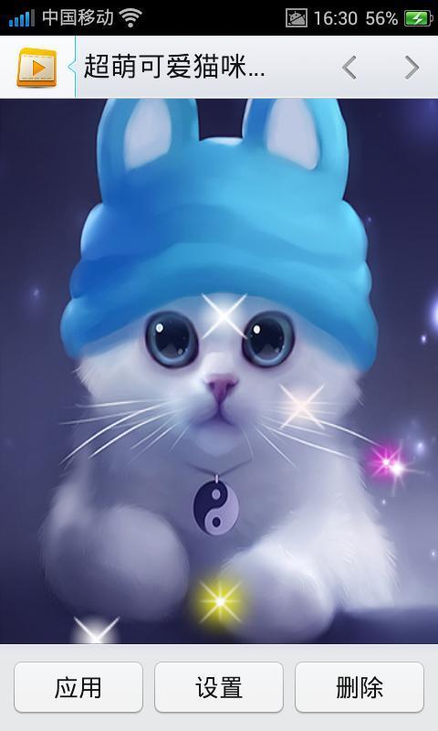 超萌可爱猫咪动态壁纸