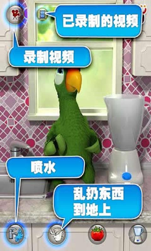 会说话的鹦鹉截图4